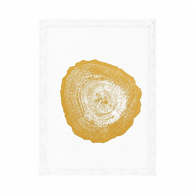 Постеры Gold Foil: Tree Rings набор из 4